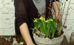 Ogród w skorupce