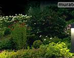 Ogród - oświetlenie ogrodu