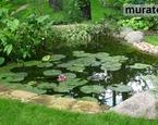 Ogród: z czego zbudować oczko wodne?