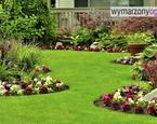 Ogród - projektowanie ogrodu