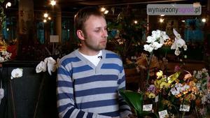 Jak kupić ładny i zdrowy storczyk