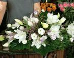Wiązanka na Wszystkich Świętych: lilie, igliwie, wrzos. ZRÓB TO SAM