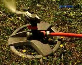 Naziemne systemy do podlewania roślin w ogrodzie