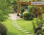 Aranżacja ogrodu: jak urządzić mały ogród?