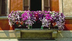 Kwiecisty balkon