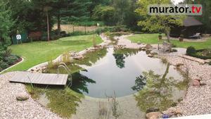 Stawy kąpielowe - dobry pomysł na wodny zbiornik w ogrodzie [WIDEO]