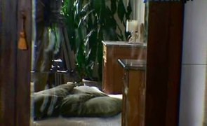 Domowa renowacja mebli