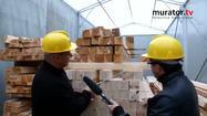 Z jakiego drewna powinna być wykonana więźba dachowa?
