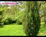 Wypoczynek w ogrodzie. Meble ogrodowe