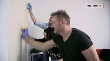 Bondex Smart Paint kontra farba najdroższa na rynku - TEST!