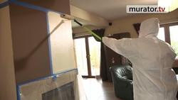 Murator.tv testuje w Waszych domach nową farbę plamoodporną