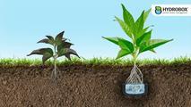 HYDROBOX - Rewolucja w nawadnianiu roślin