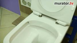 Jak wybrać WC. Rodzaje misek ustepowych