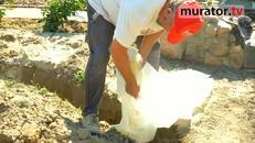 Drenaż rozsączający na działce - sposób na wodę deszczową