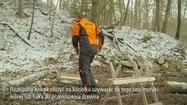 Cięcie drewna na koziołku